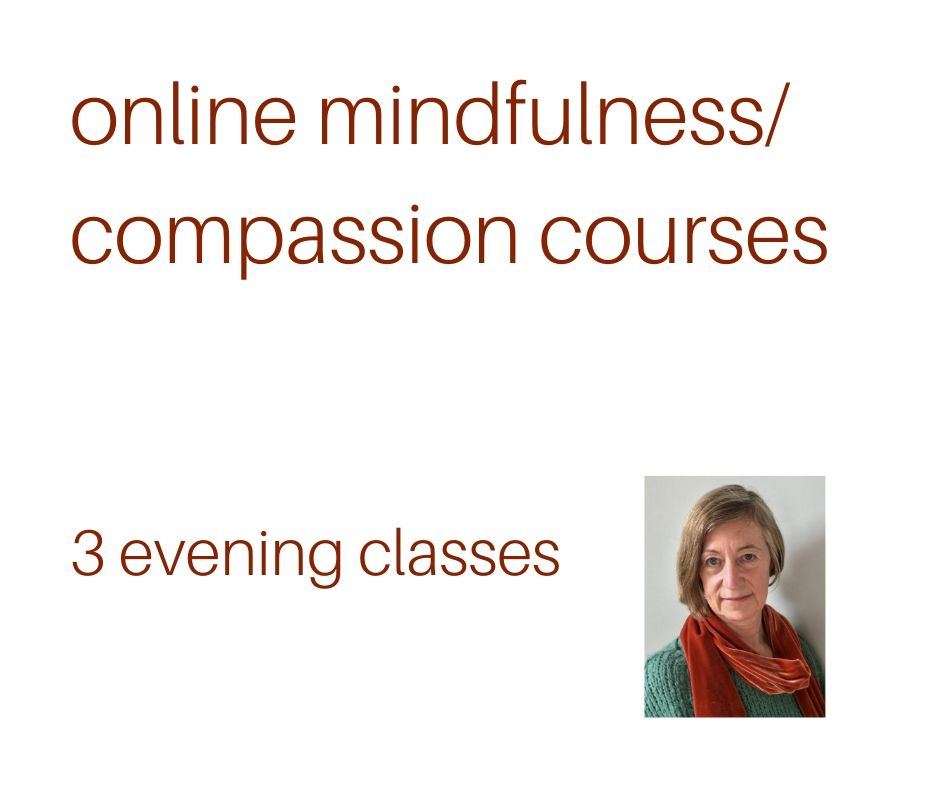 online mindfulness compassion courses NEW